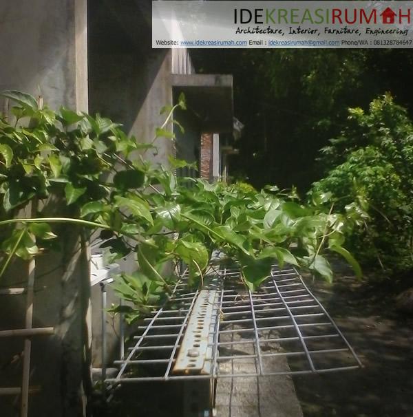Jaring Tanaman Rambat